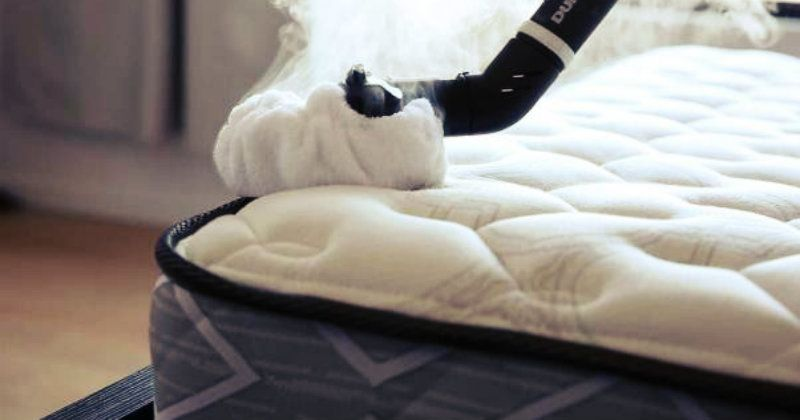 Does Dry Cleaning Remove Bed Bugs Mattress Cleaning How To Clean Carpet Dry Carpet Cleaning