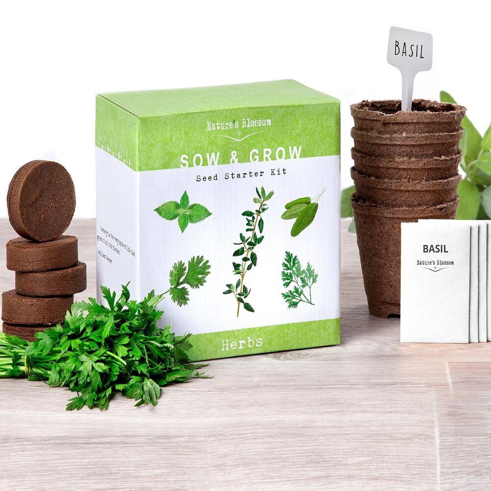 Details About Starter Kit Organic Herbs Garden 5 Seeds Grow Indoor