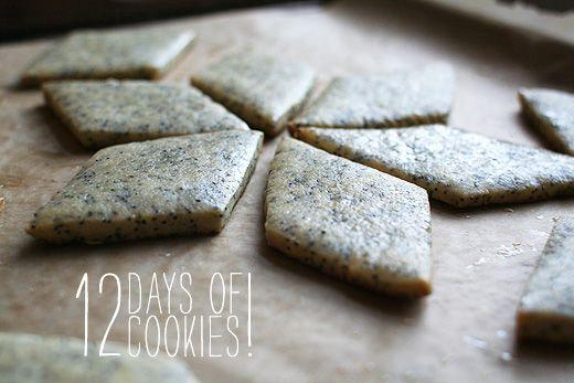 Poppy Seed-Honey Cookies from Lottie and Doof. http://punchfork.com/recipe/Poppy-Seed-Honey-Cookies-Lottie-and-Doof