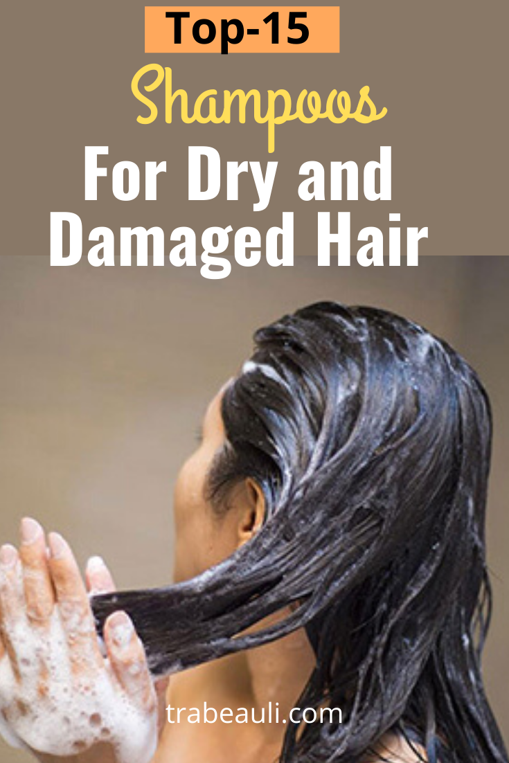Top 15 Best Shampoos For Dry And Damaged Hair Reviews Extremely Dry Hair Dry Frizzy Hair Hair Shampoo Best