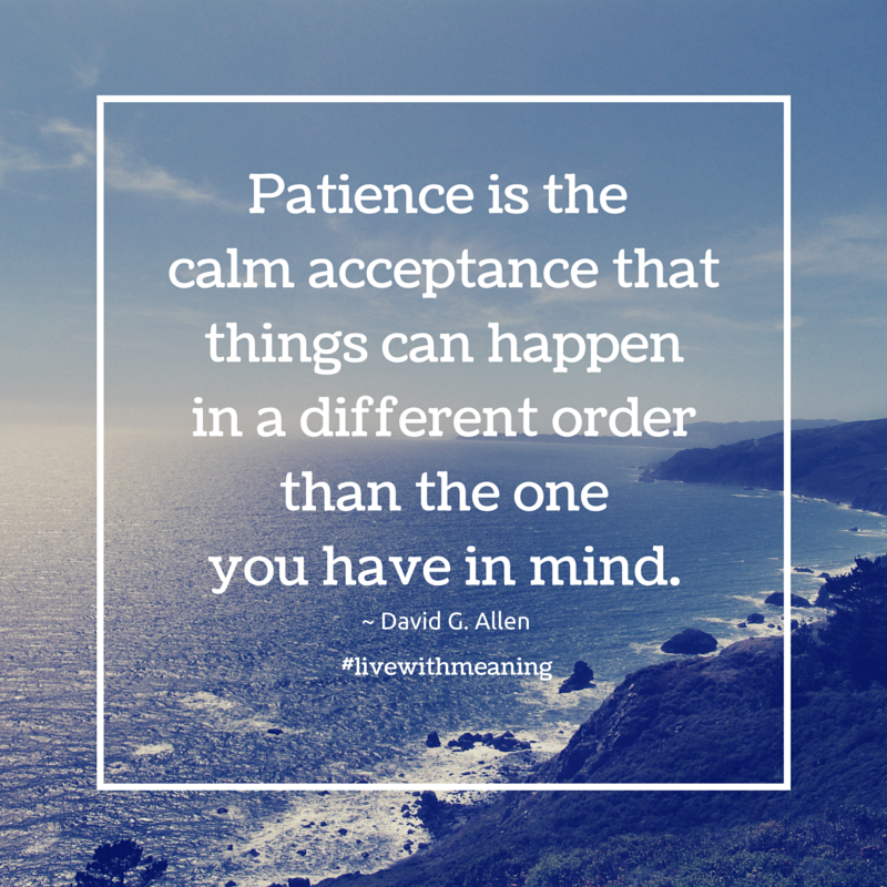 Patience is the calm acceptance that things can happen in a different order  than the one you have in mind. | Twin flame quotes, Ruskin bond,  Inspirational quotes