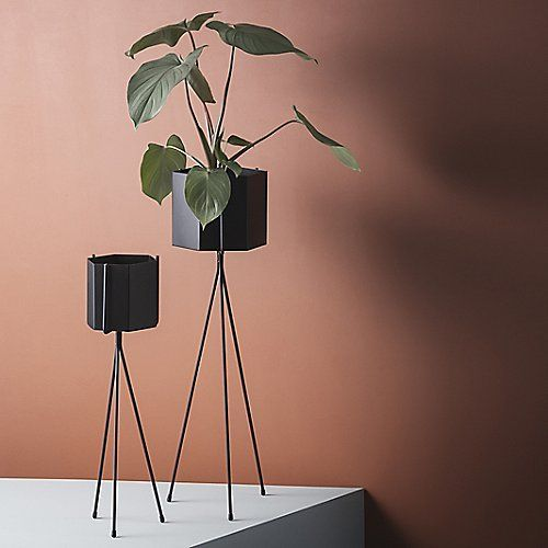 Photo of Plant Stand