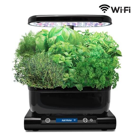 Harvest Wi Fi Classic Gourmet Herbs Herb Seeds Aerogarden 400 x 300