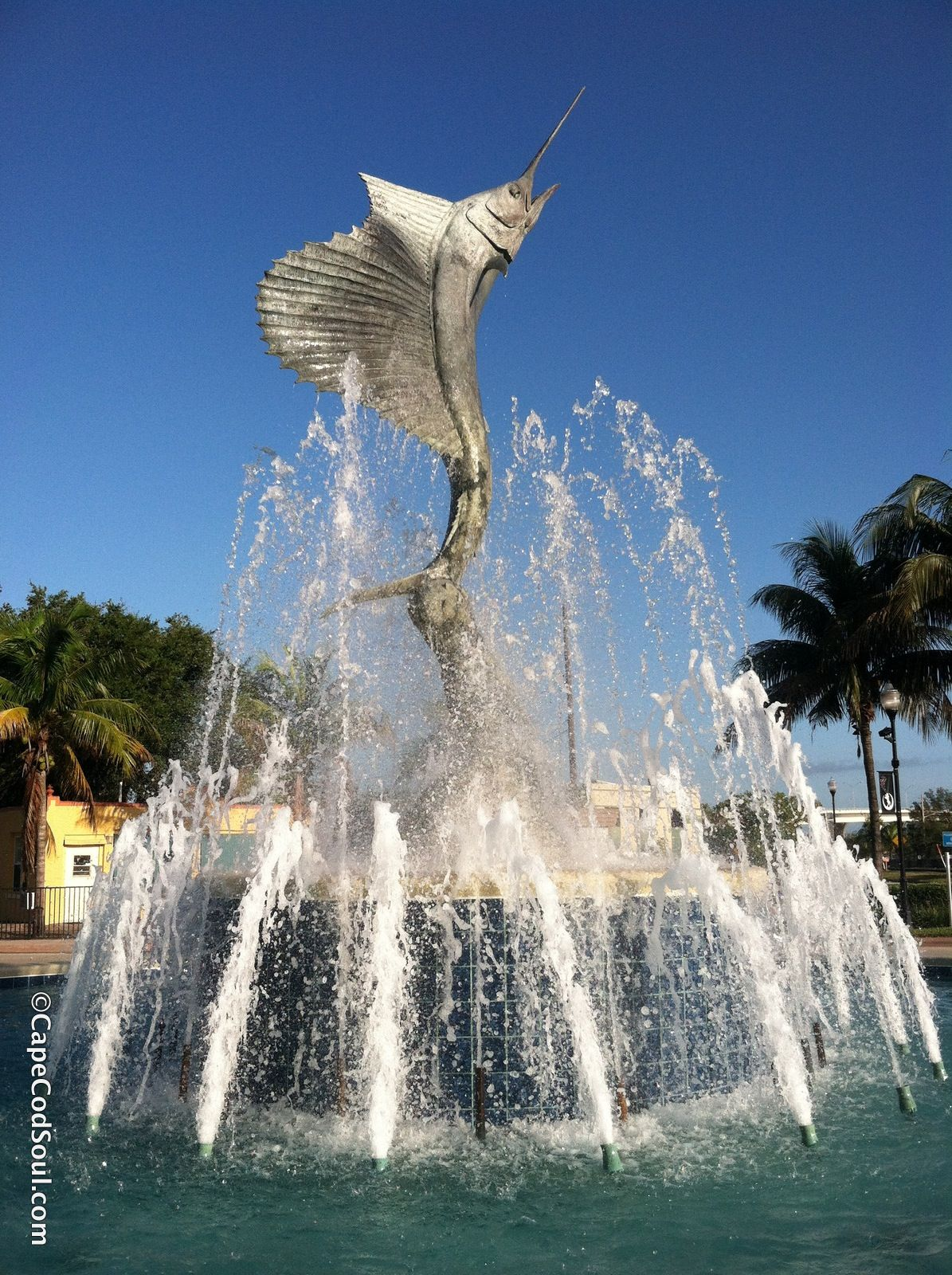 Sailfish Fountain Http Astore Amazon Com Capeccom00 20 Love Photos Fountain Stuart Florida