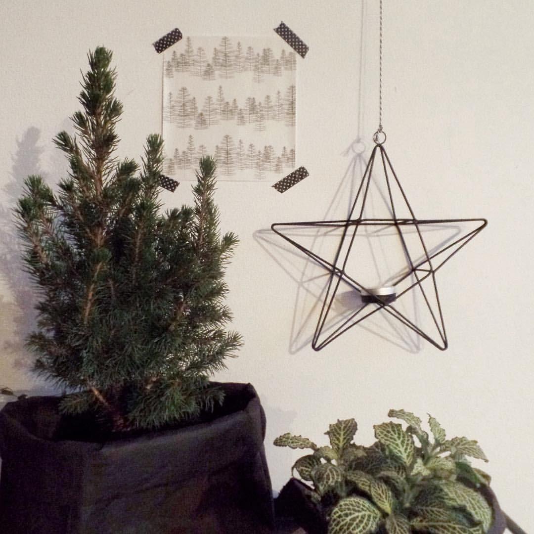 Klein beetje kerst in huis. Mini boompje en de leuke ster waxinelichthouder van #madamstoltz opgehangen. Morgen onze #stoermetaalster ook maar erbij hangen  Rustig aan dit jaar... #webshopstoermetaal #stoermetaal