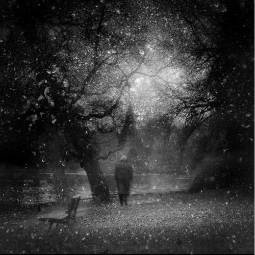 Un Jour D'hiver Au Bord Du Lac (winter day by the lake) by Malika Farman