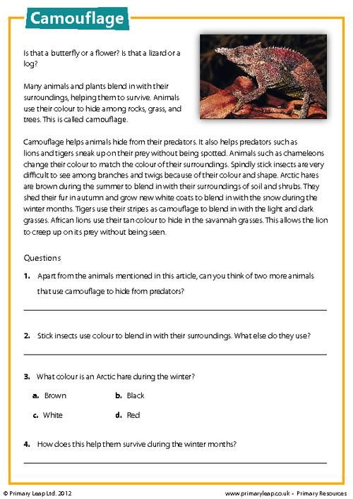 Primaryleap Camouflage Reading Comprehension Worksheet