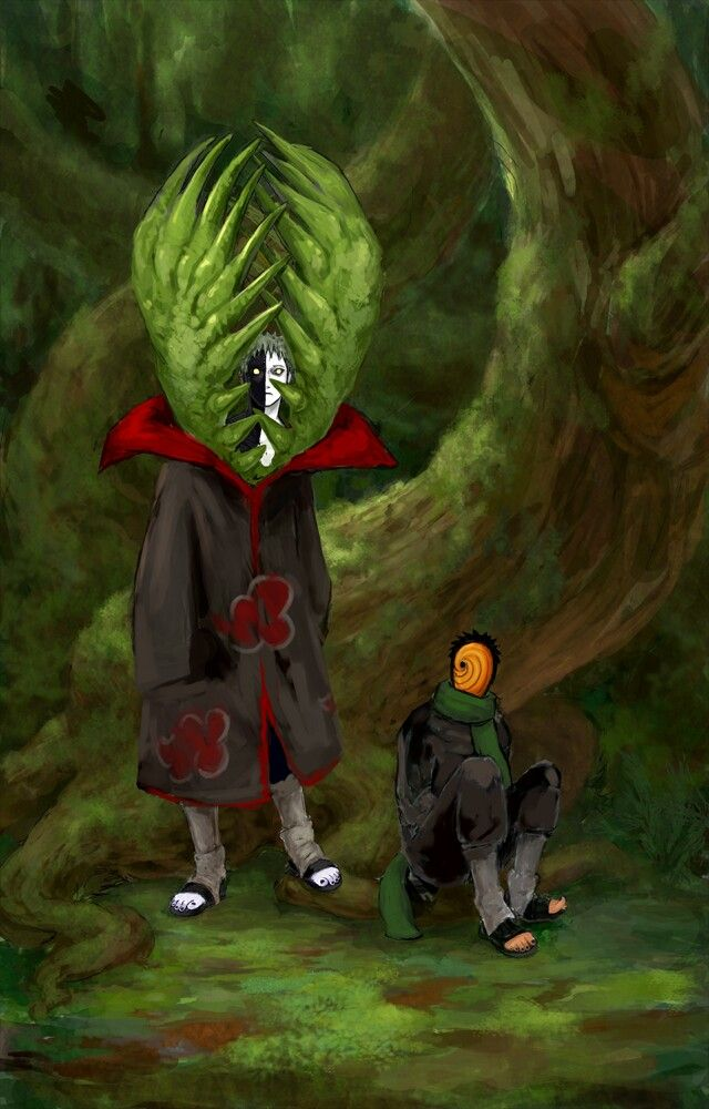 Tobi and Zetsu