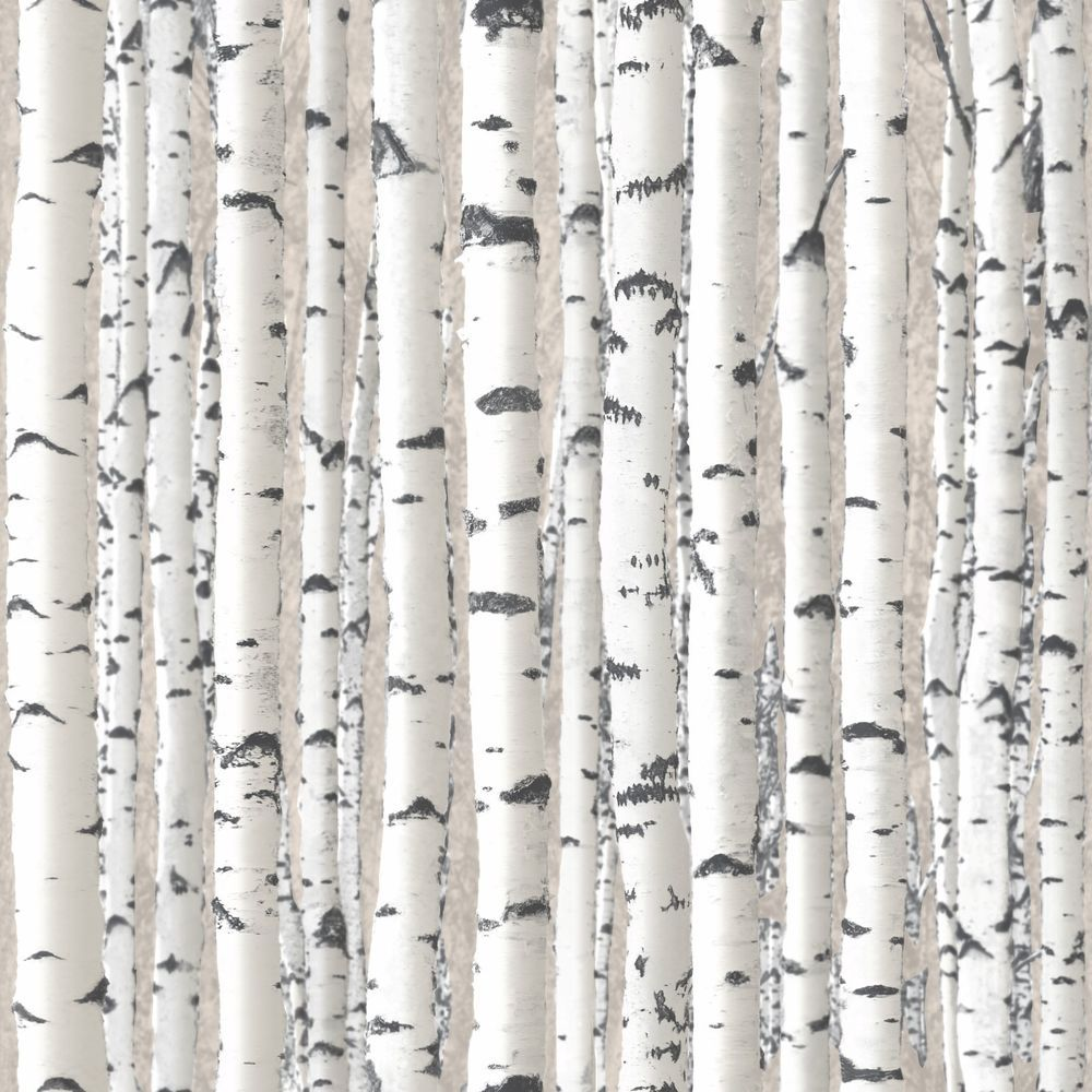 Silver Birch Branches White Trees Wallpaper Forest Feature Wall