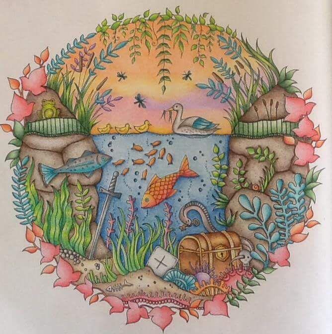 Aquarium Enchanted Forest Aquario Floresta Encantada Johanna Basford