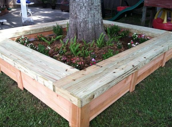 Raised Bed Around The Tree With Bench Seating Landscaping Around