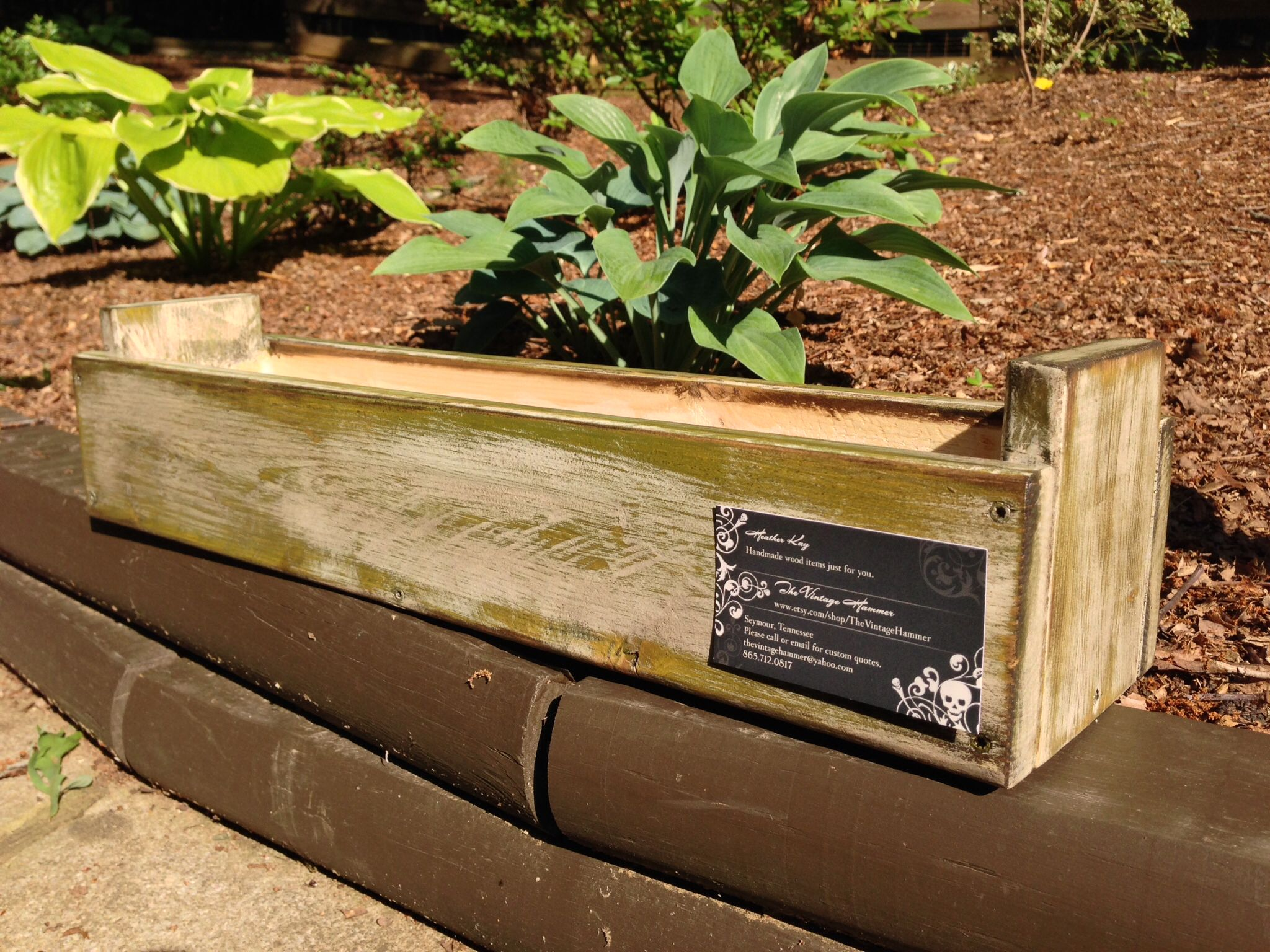 Succulent box in Okra Green. | The Vintage Hammer | Pinterest | Okra ...