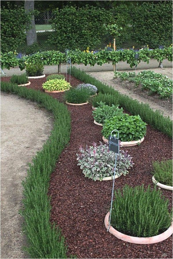 Garden Design Ideas On A Budget Markcastroco