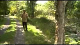 jeff lawton permaculture - YouTube