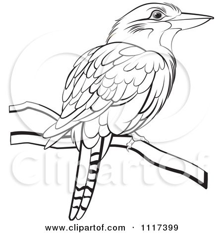 1117399 Clipart Of A Black And White Perched Kookaburra Bird