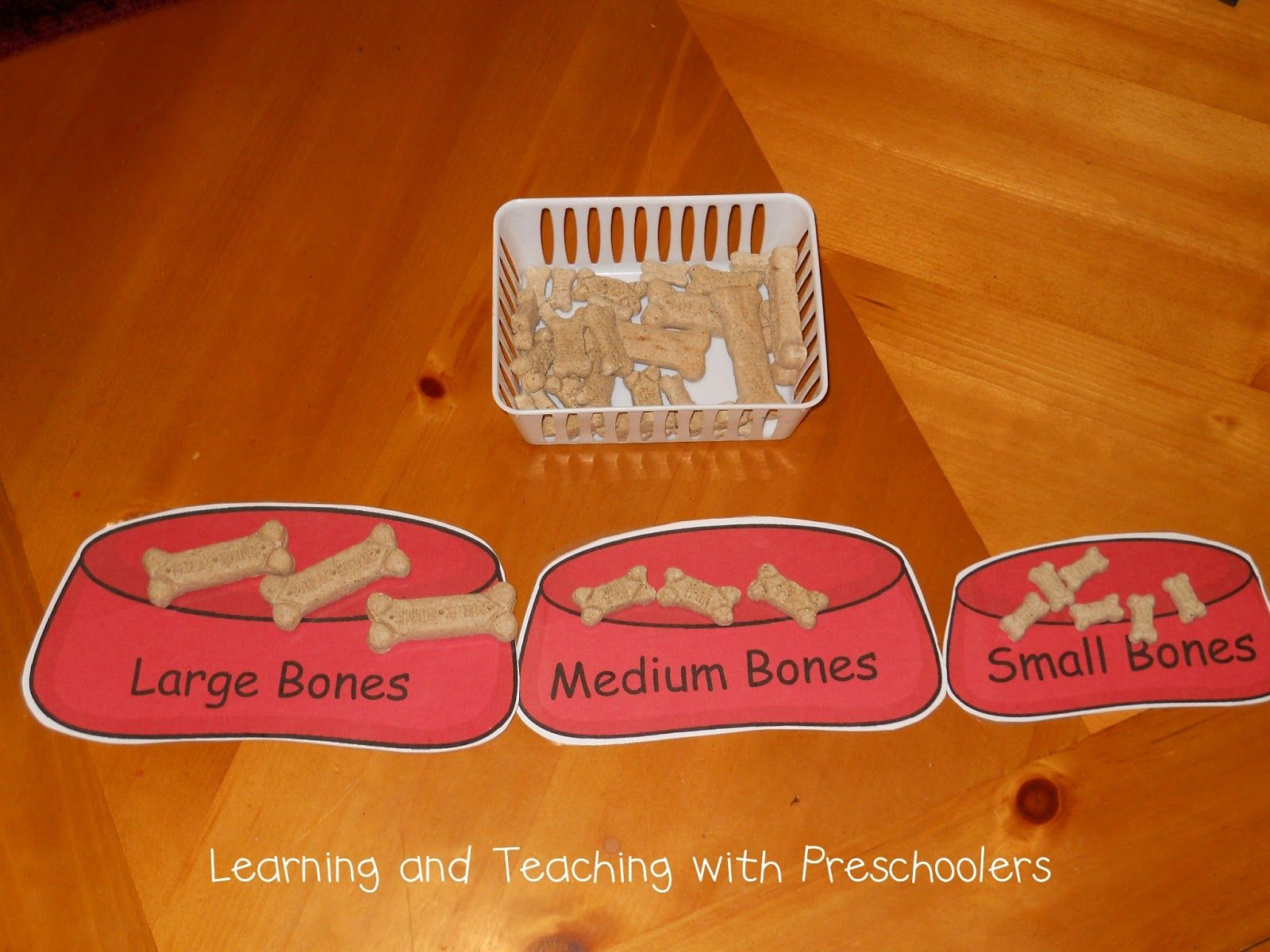 A Fun Way To Get Your Little Ones Talking About Size Small Medium And Large Activities For