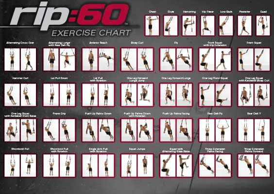 photograph about Printable Trx Workout known as Wall Chart for Suspension Instructor Physical exercises. TRX Exercises