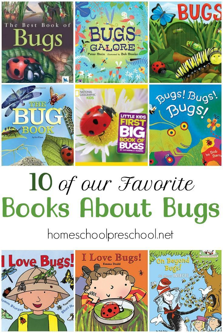 15 of My Favorite Books About Bugs | Toddler books, Book ...