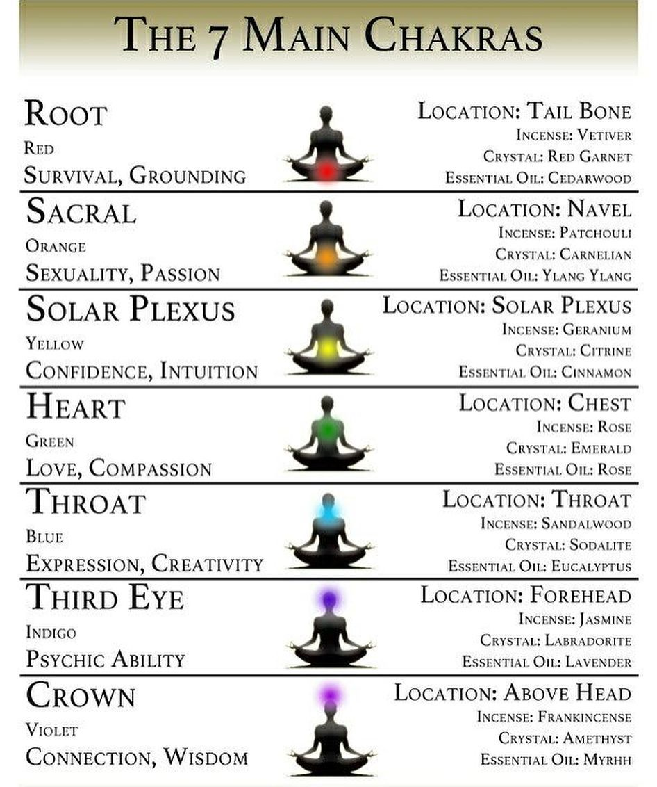 The 7 Chakras are the energy centres in our body in which ...