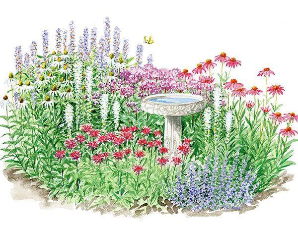 Hummingbird butterfly garden for sun backyard gardening - Butterfly and hummingbird garden designs ...