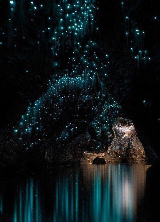 Вайтомо — пещеры светлячков в Новой Зеландии (23 фото ...