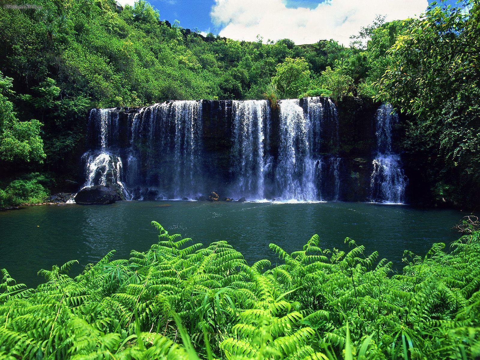 Kauai The Garden Island Wallpaper Kauai Waterfalls Kauai Waterfalls Hawaiian Waterfall Beautiful Waterfalls
