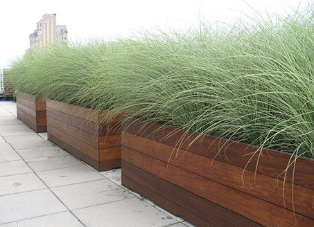Planter boxes along the fence line container garden for Ornamental grass in containers for privacy