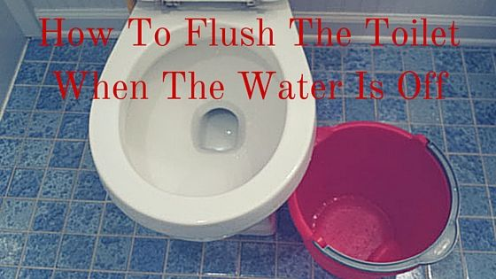 How To Flush The Toilet When The Water Is Off Toilet Cleaning Hacks Flush Clean Toilet Bowl