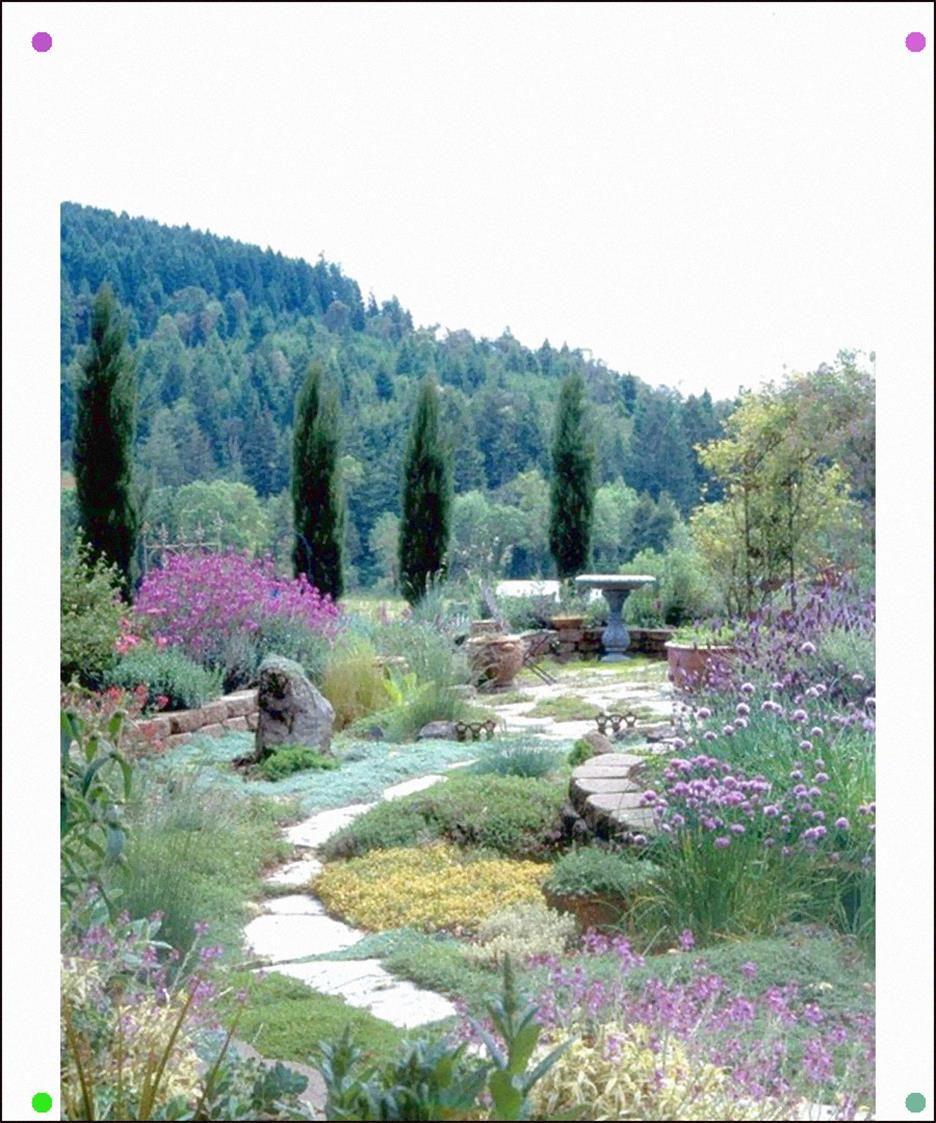 Modern Italian Garden Design: Jaw-Dropping Gardens On Pinterest - Dujour