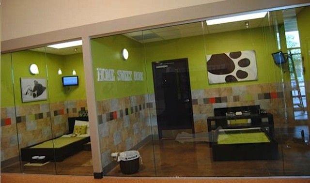 Dog Training Courses Handling Dog Aggression Dog Boarding Kennels Dog Kennel Designs Dog Hotel