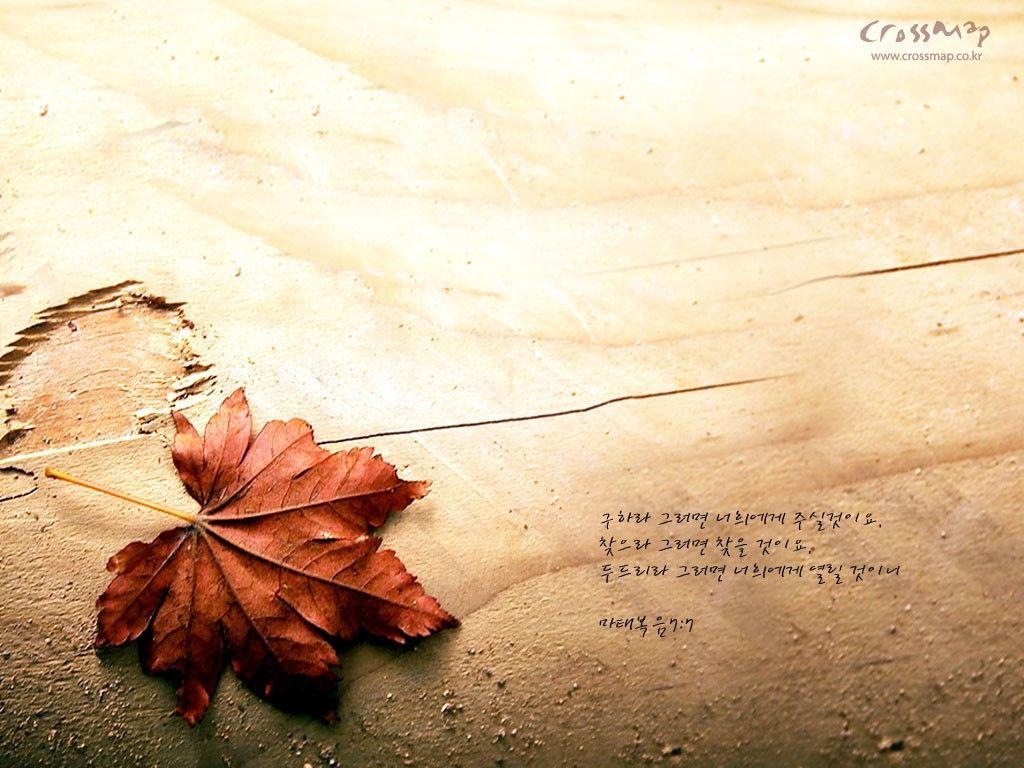 Image detail for -Christian Wallpaper Psalm 145:19-21 NKJV | Free ...