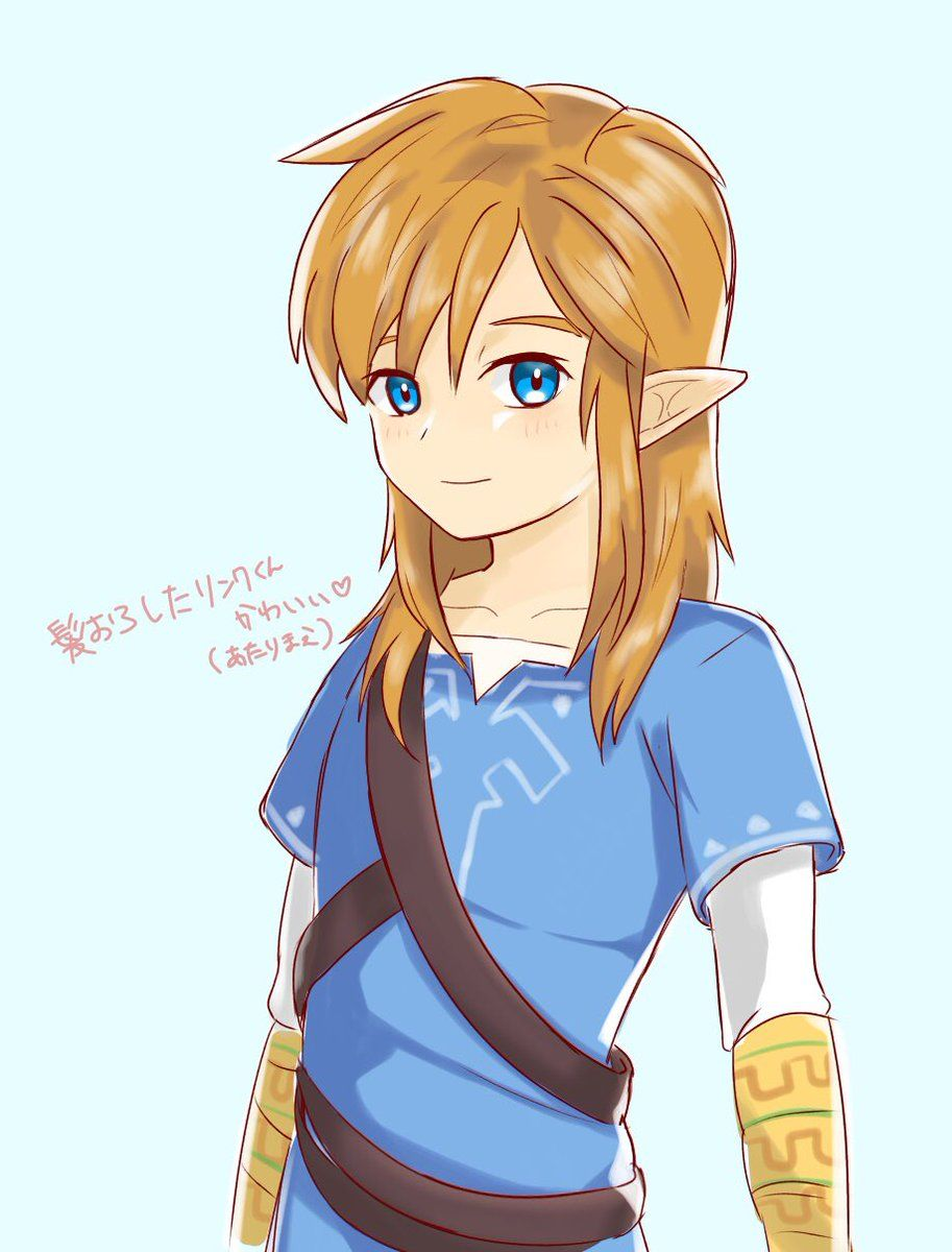 Pin By Xuanˆˆ On Link W Legend Of Zelda Breath Of