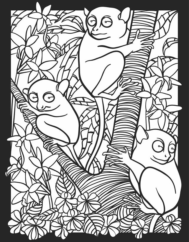 Creatures Of The Night Stained Glass Coloring Book Dover