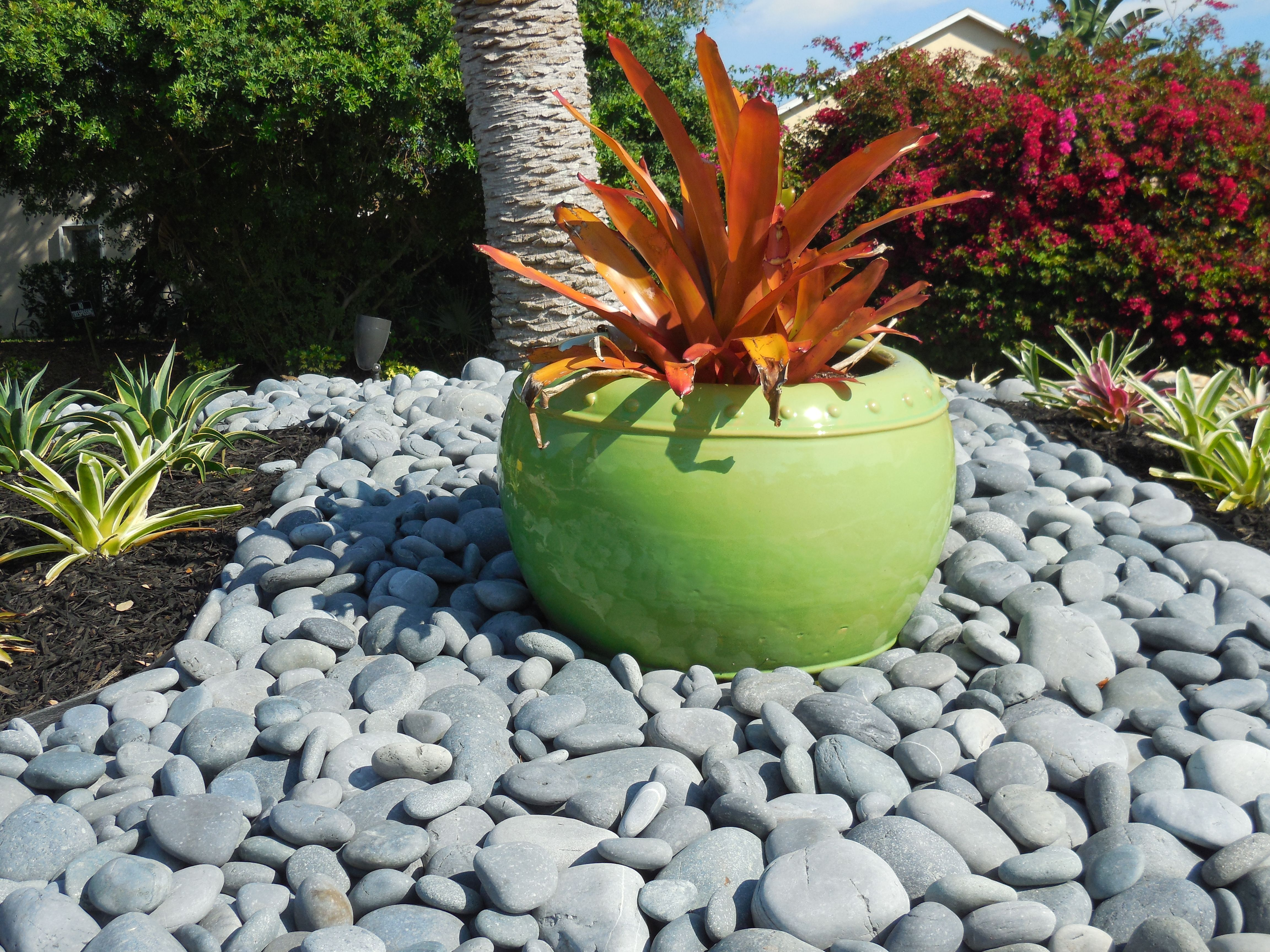 Mexican beach pebbles landscape gravel pinterest for Pebbles in backyard