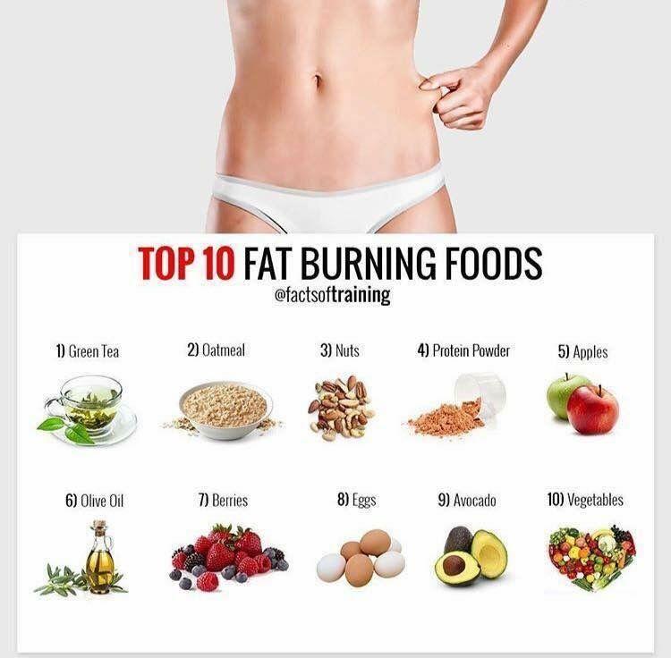 Csiro New Diet Plan 2015