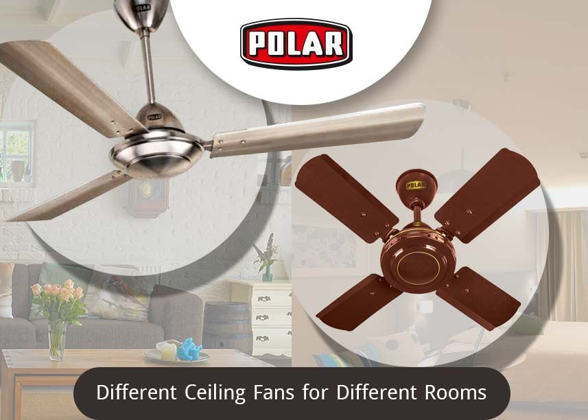 Different Rooms Have Different Needs For Ceiling Fans Ceiling