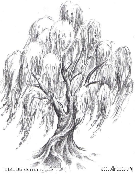 Coloring Page Willow Tree. weeping willow tree tattoos  love this Img18037 drawing thumb jpg picture by dumblondy991