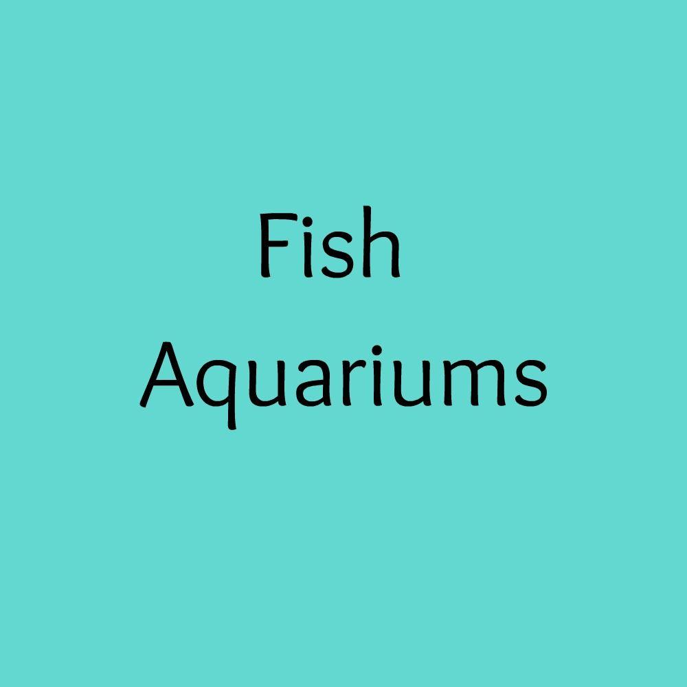 Fish aquariums aquarium fish unique items products