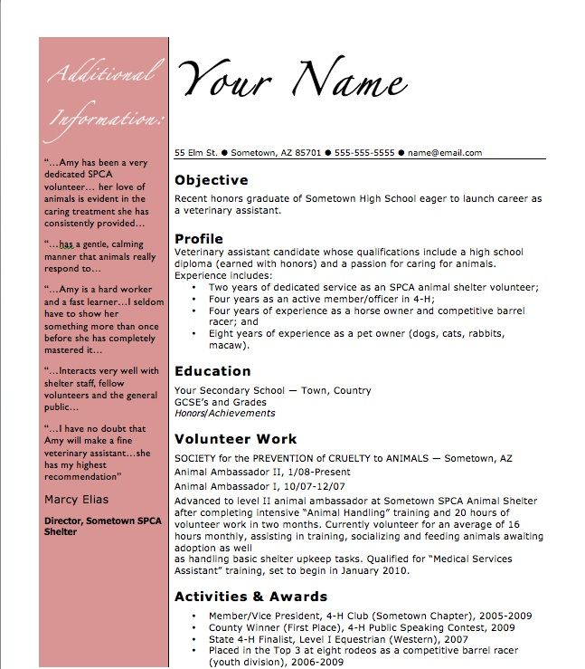 cool cvs for vet nursing positions - Google Search Places and - how to make a resume as a highschool student