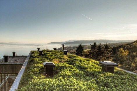10 motivos para ter telhado verde.