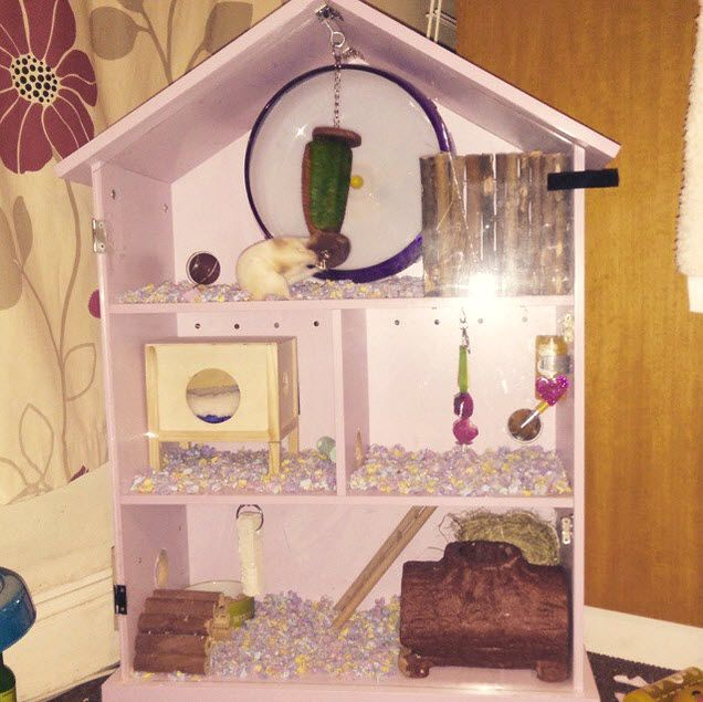Diy dollhouse hamster cage critter stuffs for How to build a hamster cage