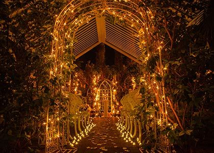Las Vegas Weddings Feel Like A Princess Fairytale Las Vegas Wedding Las Vegas Wedding Chapel Las Vegas Wedding Packages Las Vegas Weddings