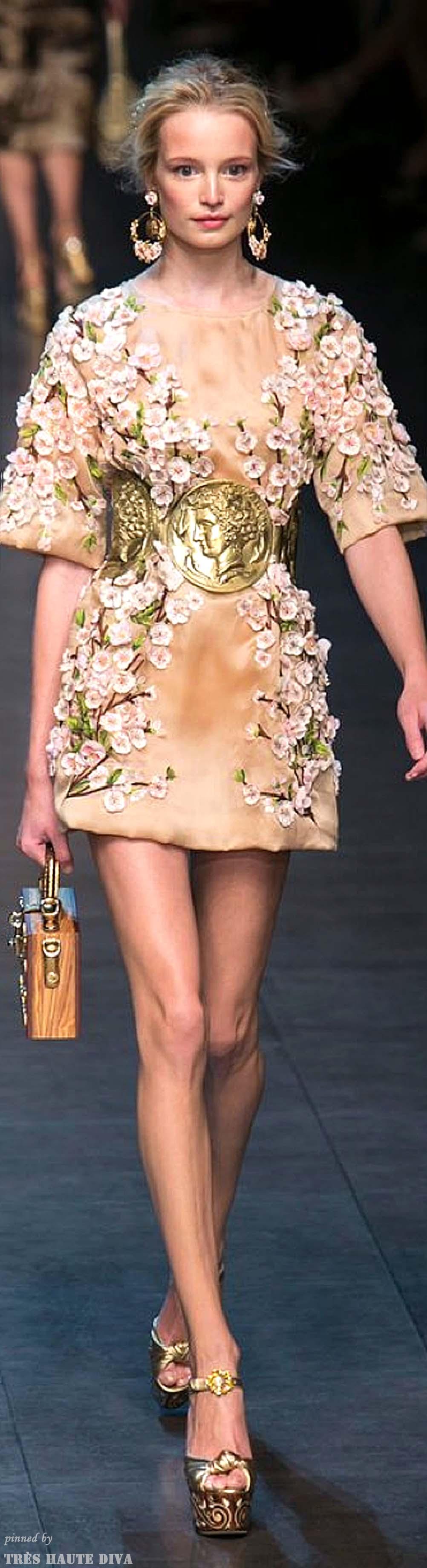 Dolce & Gabbana Spring 2014 Fashion, Couture fashion