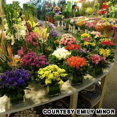 Best of Shanghai -- Flower market