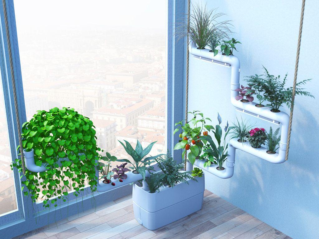 Clean indoor air with plants Wall plants indoor, Plants