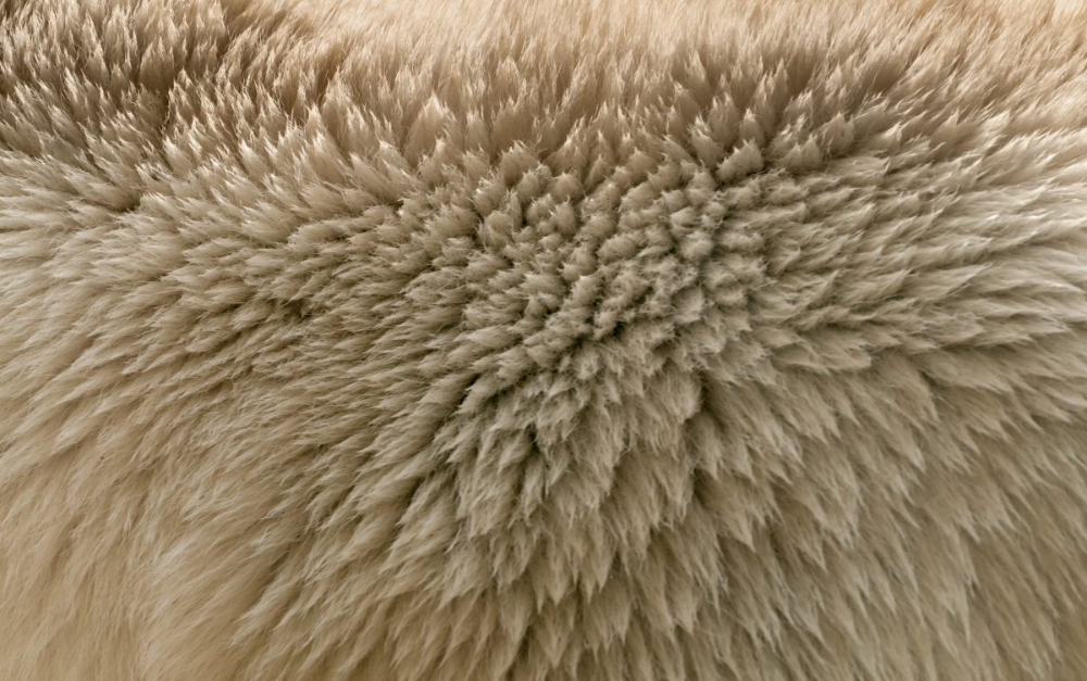 Ice Bear Fur Texture Pattern Pictures Fur Textures Textures Patterns Pattern Pictures