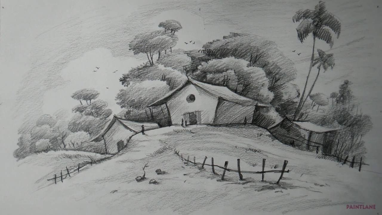 Drawing Creativity