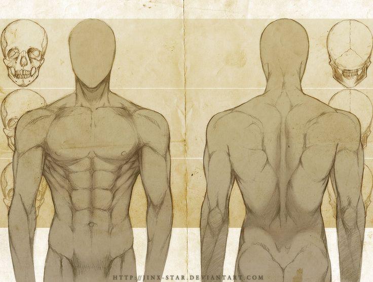 Image result for male anatomy art reference | art ref | Pinterest ...