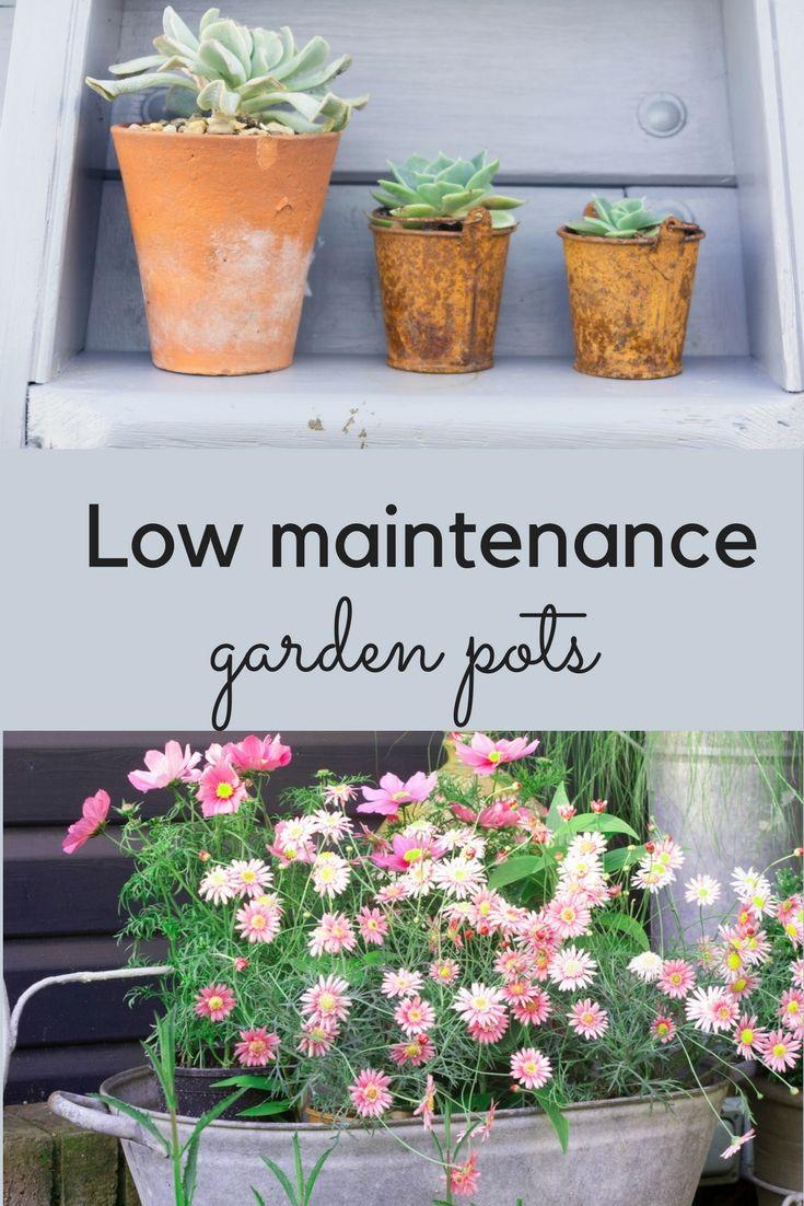 The Best Plants For Amazingly Low Maintenance Garden Pots Lawn