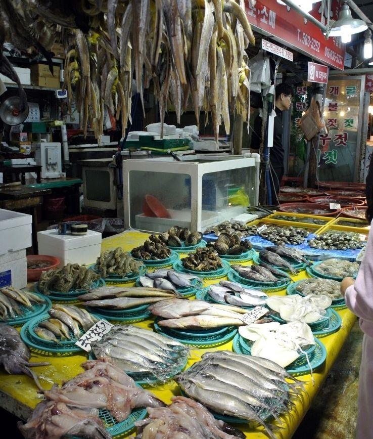 Fish Market In Buan Korea Korea Traditional Market Open Market